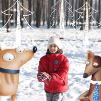 Новогодняя викторина про собак