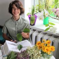 Детский гербарий и приложение для идентификации растений